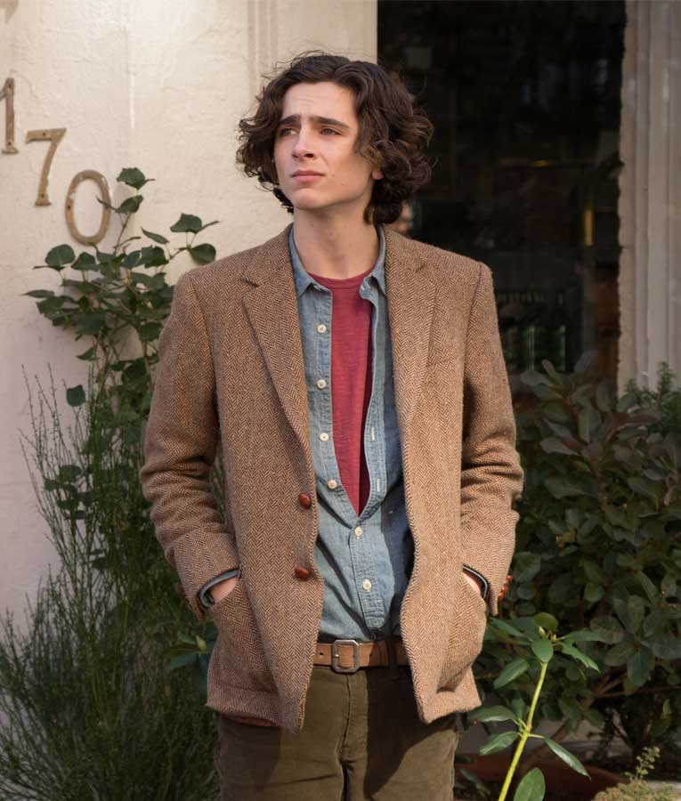 Gatsby A Rainy Day in New York Timothée Chalamet Tweed Blazer