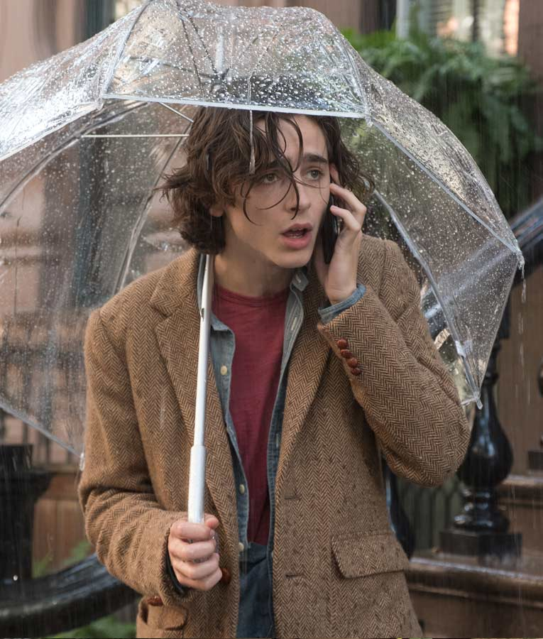 A Rainy Day in New York Timothée Chalamet Blazer